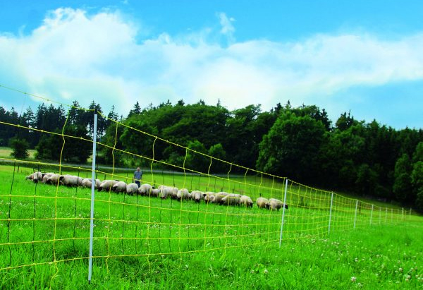 electric-fence-guide